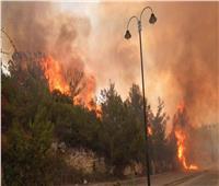 الأردن يرسل طائرتين إلى لبنان للمساعدة في إخماد الحرائق