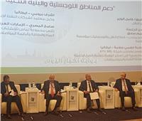 «صادق»: البنية التحتية في مصر تخلق فرص للاستثمار المحلي والدولي