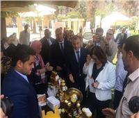 الزراعة: قرار وزاري ينظم صناعة عسل النحل المصري