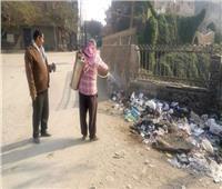 رش بؤر تجمعات القمامة لمكافحة الحشرات بالجيزة