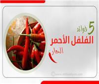 إنفوجراف | 5 فوائد لـ«الفلفل الأحمر الحار»
