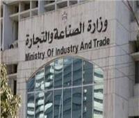 «التجارة والصناعة» يستقبل أحد مستثمري «مصر تستطيع بالاستثمار»
