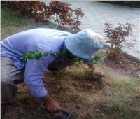 «هنجملها» .. مبادرة جديدة تشارك فيها جامعة القاهرة لنشر الوعي البيئي