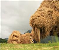 كوكب اليابان الشقيق| أعمال نحتية من «قش الأرز».. وكلمة السر «التاتامي»