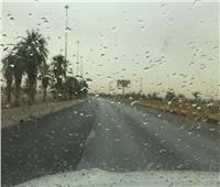 أمطار خفيفة على مدينة شبرا الخيمة بمحافظة القليوبية