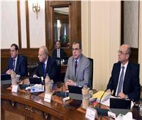 مجلس الوزراء يوافق على تحديد سعر شراء طاقة الكهرباء بالجنيه