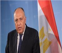 مصر تدين العدوان التركي على سوريا.. وقطر تعتبره حقها في الدفاع الشرعي
