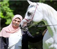 حوار| نجلاء رضوان: خيول محطة الزهراء في «الحفظ والصون»