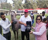 نائب وزير الزراعة تفتتح بطولة مصر القومية والدولية لجمال الخيول العرببة
