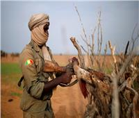 «تنظيم داعش» يتبنى هجومًا أودى بحياة 53 جنديًا في مالي