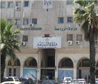 الزراعة: مصر لا تصدر دواجن إلى غينيا.. ونطبق معايير الصحة الحيوانية للتصدير