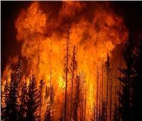 حرائق الغابات تجبر مئات السكان على إخلاء منازلهم بأستراليا