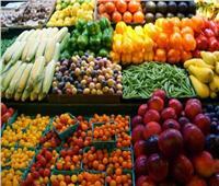 البطاطس والموالح في المقدمة  ارتفاع صادرات مصر الزراعية لـ4.8 مليون طن