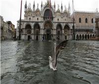صور وفيديو| فيضانات كارثية تجتاح البندقية الإيطالية.. ورئيس المدينة يلوم تغير المناخ