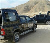ضبط 35 قطعة سلاح و80 هاربًا في حملة أمنية مكبرة بنجع حمادي