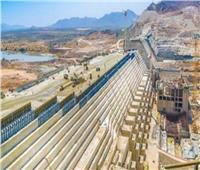 عضو بمفاوضات «سد النهضة»: طرحنا رؤية جديدة لا تتضمن سنوات محددة لملء السد الإثيوبي