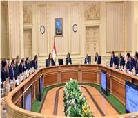 رئيس الوزراء: برنامج التنمية المحلية أحد المحركات بمحافظات الصعيد