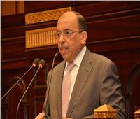 وزير التنمية المحلية: الحكومة اتخذت إجراءات لمواجهة التغيرات المناخية