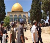 عشرات المستوطنين يقتحمون الأقصى بحراسة مشددة من قوات الاحتلال الإسرائيلي