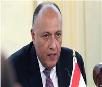 وزير الخارجية: مبادرة شراكة مجموعة الـ20 مع إفريقيا رفعت حجم استثمارات المجموعة بالقارة