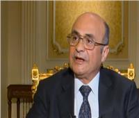وزير شؤون النواب: الأشقاء العرب دعموا مصر بملف حقوق الإنسان