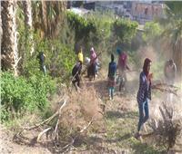 آثار الإسكندرية تعلن عن مبادرة «حكاية تاريخية»