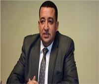 عبد القادر: صندوق تشجيع الاستثمار في أفريقيا يحقق مصالح مصر وألمانيا