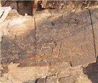 اكتشاف رسومات صخرية عمرها 2600 سنة شمال غربي الصين