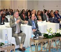 وزيرا «الصناعة» و«قطاع الأعمال» يشاركان في جلسة رسم خريطة الموارد الإفريقية