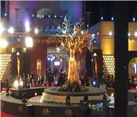 بدء افتتاح مهرجان القاهرة السينمائي الدولي الـ41