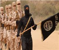 «داعش» يعلن مسؤوليته عن مقتل 30 جنديا في مالي