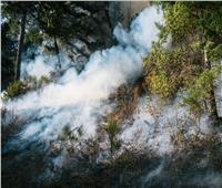 «نحترق لنشفى».. عندما تصبح النار علاجا للأرض والأرواح