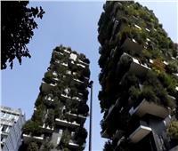 أفضل بنايتين طويلتين في العالم