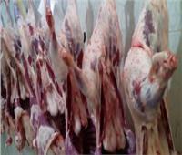 حقيقة تراجع وزارة الزراعة عن قرار حظر ذبح «البتلو»