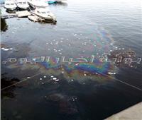 صور| قمامة ومواد بترولية تلوث «مياه النيل» أسفل كوبري الجامعة