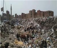 أهالي شبين الكوم يطالبون المحافظ الجديد بنقل أكبر مجمع قمامة