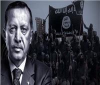 خاص| دبلوماسي: الغرب يعلم تعامل أردوغان  مع «داعش» عبر وسطاء