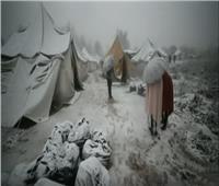 شاهد| تقرير يوضح أوضاع اللاجئين في مخيم «فوكيجاك» بالبوسنة