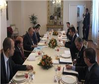 شكري يستعرض مع وزير خارجية إيطاليا الأثر السلبي لاتفاق السراج وأردوغان
