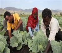 الدول الأفريقية تتبني «إعلان ابيدجان» لتطوير مهارات الشباب