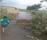 «الأمطار» تتسبب في ارتفاع منسوب النيل وغرق الأراضي الزراعية بالغربية