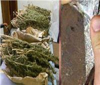 ضربة استباقية موجعة لتجار المخدرات بالمرج