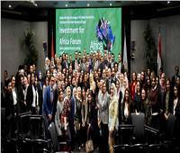 صور|وزارة الاستثمار تحتفل بنجاح منتدى إفريقيا 2019