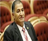 «برلماني» يطالب الحكومة بوقف الذبح خارج السلخانات وتطوير المجازر