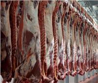 فيديو| «الزراعة» تعلن ارتفاع أسعار اللحوم خلال الفترة المقبلة