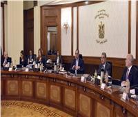مدبولي يشهد توقيع برتوكول بين الكهرباء وشركة النويس الإماراتية