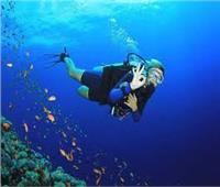 غرفة الغوص تمنع أي أنشطة في منطقة رأس أم السيد بشرم الشيخ