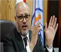 إبراهيم الهدهد: الدستور يكفل للأزهر إبداء الرأي في الأمور الإسلامية
