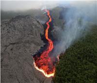انتشال 6 جثث من جزيرة بركانية في نيوزيلندا