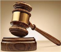 حبس «عاطل» سرق حقيبة سيدة أجنبية بالتجمع الخامس